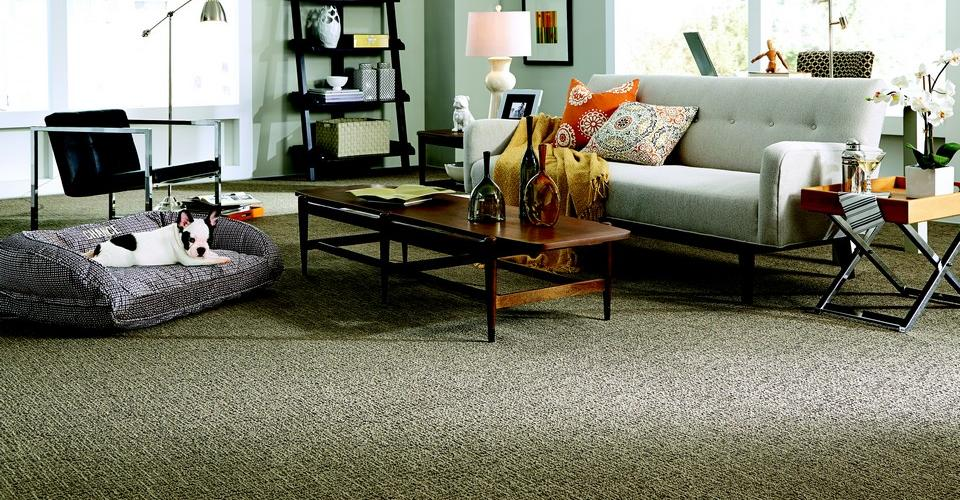 Specialized Floor Coverings Quality Carpet And Flooring